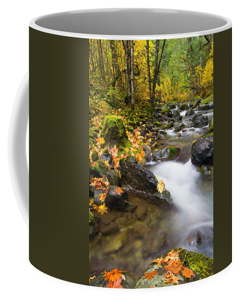 Fall Coffee Mug featuring the photograph Golden Grove by Mike Dawson
