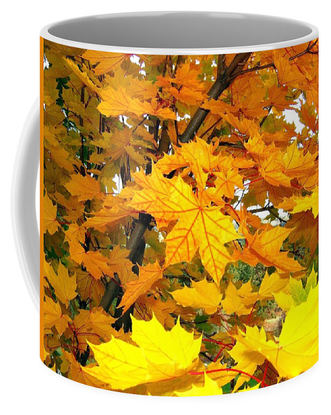 Autumn Coffee Mug featuring the photograph Golden Moments by Will Borden