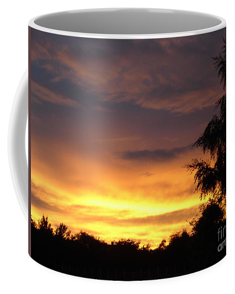 Sunset Coffee Mug featuring the photograph Golden Sunset 2 by Carol Lynch