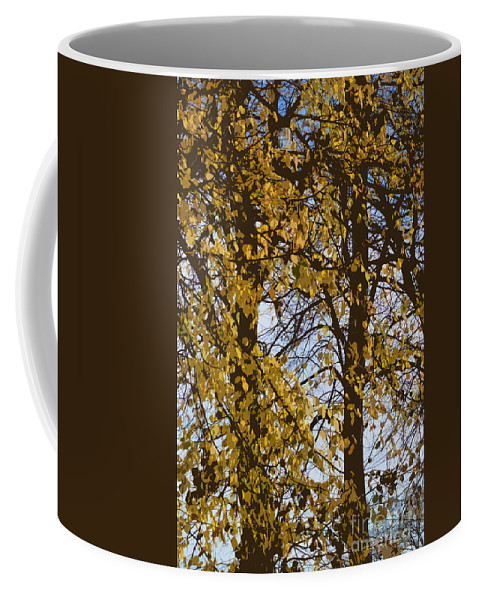 Autumn Coffee Mug featuring the photograph Golden Tree 2 by Carol Lynch