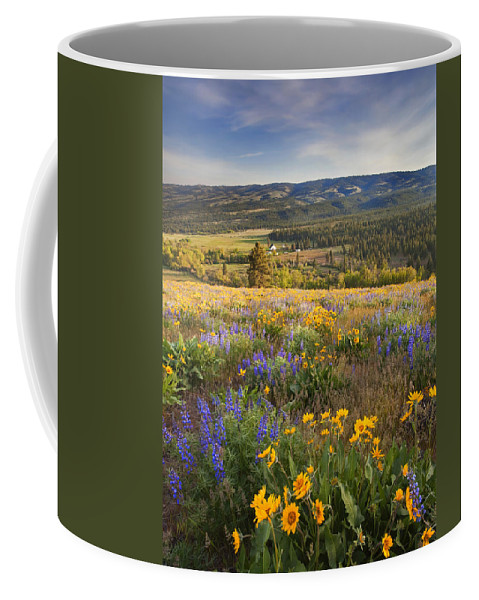 Wildflowers Coffee Mug featuring the photograph Golden Valley by Mike Dawson