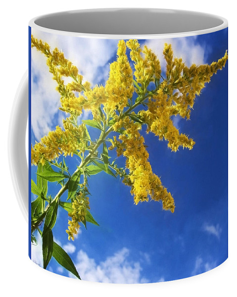 Yellow Flower Coffee Mug featuring the photograph Goldenrod In The Sky by Shawna Rowe
