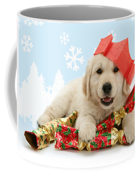 Golden Retriever Coffee Mug featuring the photograph Goldie Crackers by Warren Photographic