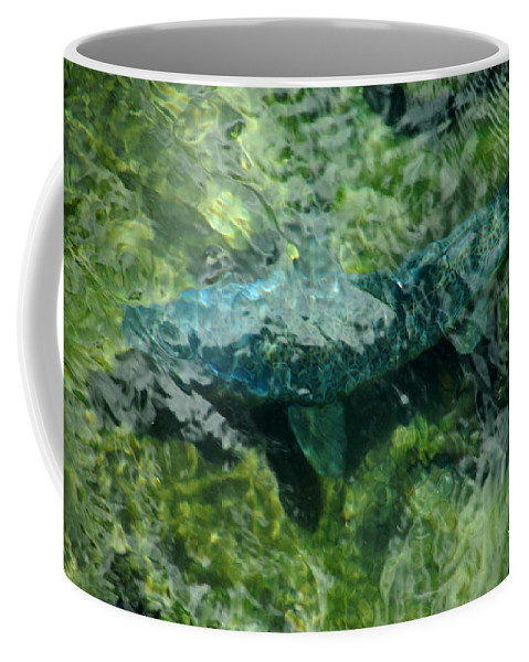 Water Coffee Mug featuring the photograph Gone Fishin by Donna Blackhall