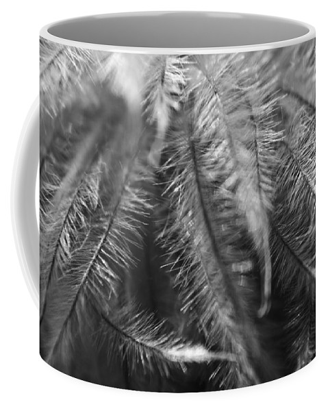 Clematis Coffee Mug featuring the photograph Gone To Seed Clematis by Teresa Mucha