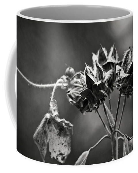 Flower Coffee Mug featuring the photograph Gone To Seed Hibiscus by Teresa Mucha