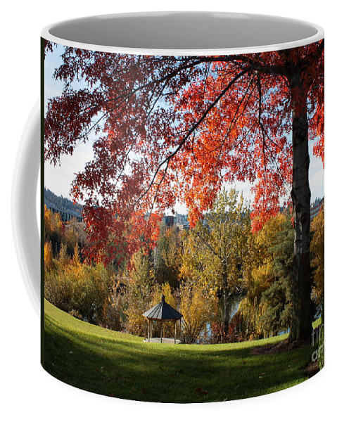 Spokane Coffee Mug featuring the photograph Gonzaga With Autumn Tree Canopy by Carol Groenen