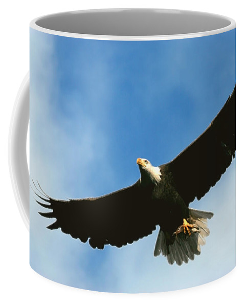 Bald Eagle Coffee Mug featuring the photograph Good Catch by Randall Ingalls