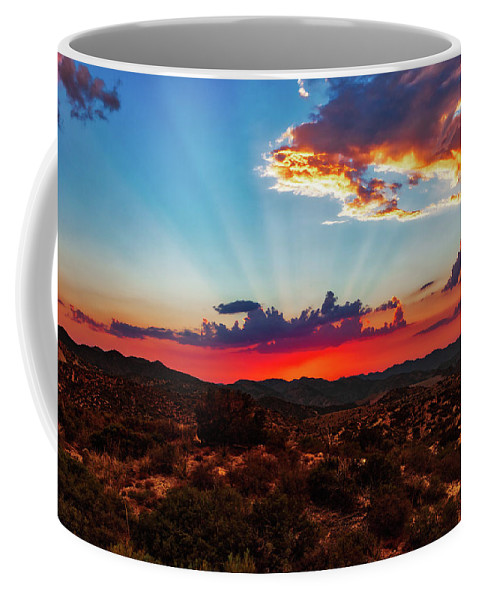 Agave Coffee Mug featuring the photograph Good Evening Arizona by Rick Furmanek