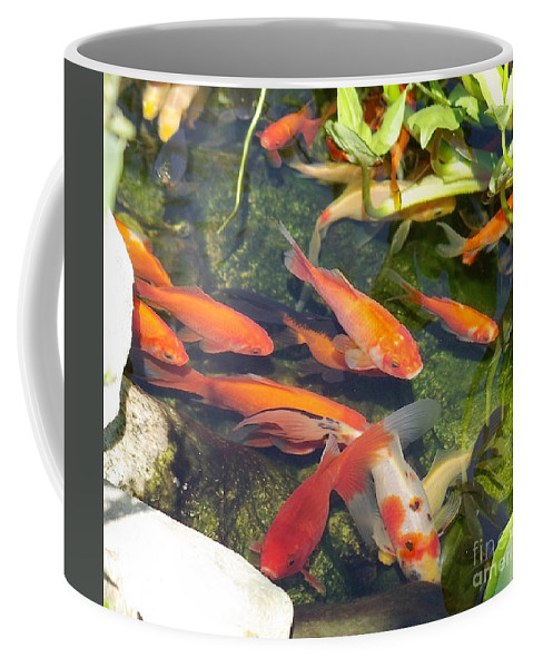 Fish Coffee Mug featuring the photograph Good Luck Charms by Victor K