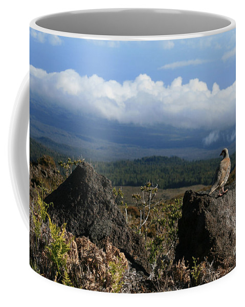 Aloha Coffee Mug featuring the photograph Good Morning Maui by Sharon Mau
