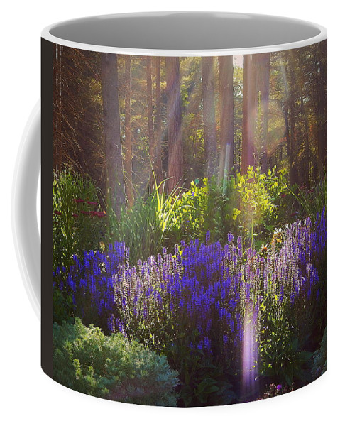 Good Morning Sunshine Coffee Mug featuring the photograph Good Morning Sunshine by Karen Cook