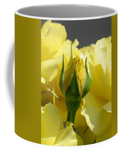Floral Coffee Mug featuring the photograph Good Morning Sunshine by Marla McFall