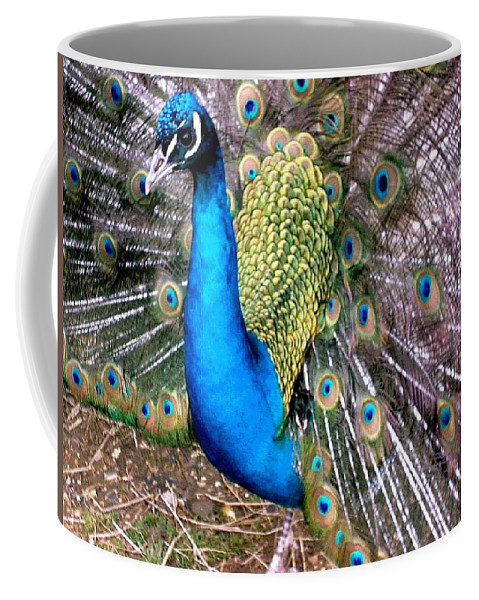 Peacock Coffee Mug featuring the photograph Gorgeous George by Susan Baker