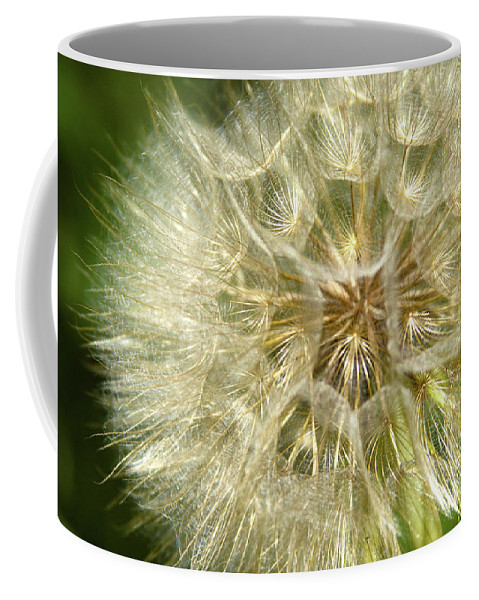 Dandelion Coffee Mug featuring the photograph Gossamer Summer by Marie Leslie