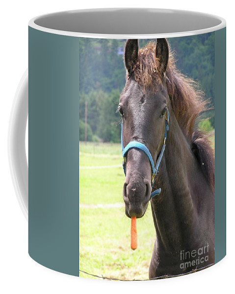 Friesian Coffee Mug featuring the photograph Got Carrots by Louise Magno