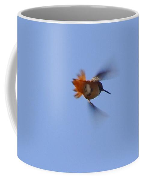 Linda Brody Coffee Mug featuring the photograph Gotta Go Fast II by Linda Brody