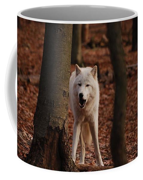 Wolf Coffee Mug featuring the photograph Gotta Laugh by Lori Tambakis