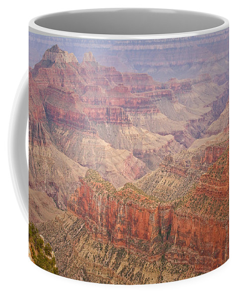 Grand Canyon Coffee Mug featuring the photograph Grand Canyon North Rim by James BO Insogna
