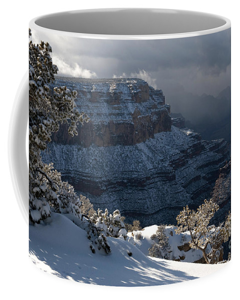Grand Canyon Coffee Mug featuring the photograph Grand Canyon Storm by Sandra Bronstein