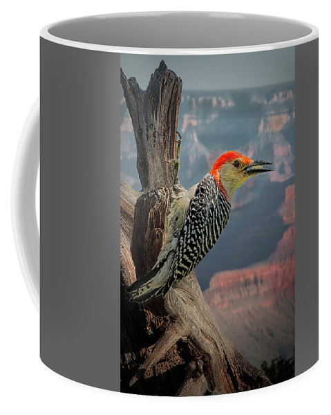 Granid Canyon Woodpecker Coffee Mug featuring the photograph Grand Canyon Woodpecker by Janet Ballard