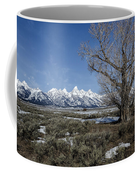 Grand Tetons Coffee Mug featuring the photograph Grand Tetons From Gros Ventre by Belinda Greb
