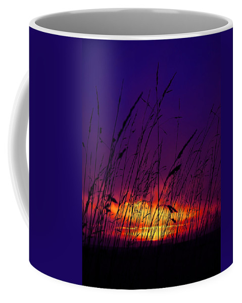 Black Coffee Mug featuring the photograph Grass At Dusk by Svetlana Sewell