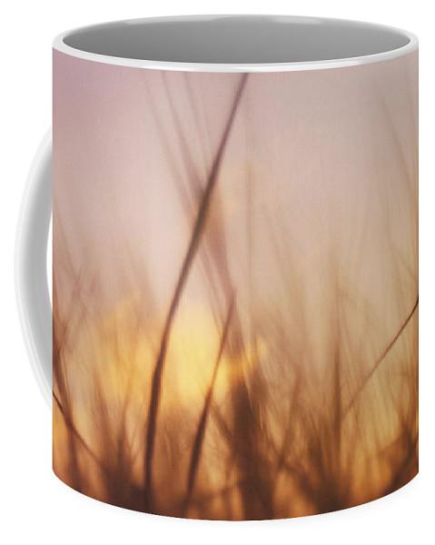 Grass Coffee Mug featuring the photograph Grass In A Windy Field by Fabrizio Troiani