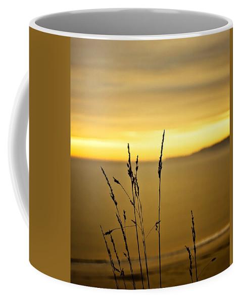 Art Coffee Mug featuring the photograph Grass by Svetlana Sewell