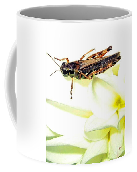 Grasshopper Coffee Mug featuring the photograph Grasshopper by Will Borden