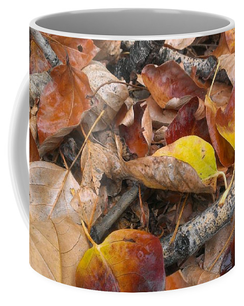 Autumn Coffee Mug featuring the photograph Graveyard by LKB Art and Photography