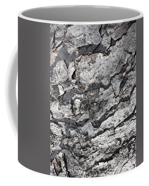 Nature Abstract Coffee Mug featuring the photograph Gray Bark by Carol Groenen