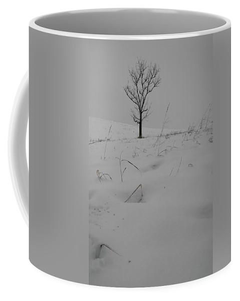 Snow Coffee Mug featuring the photograph Grayish Winter by Dylan Punke