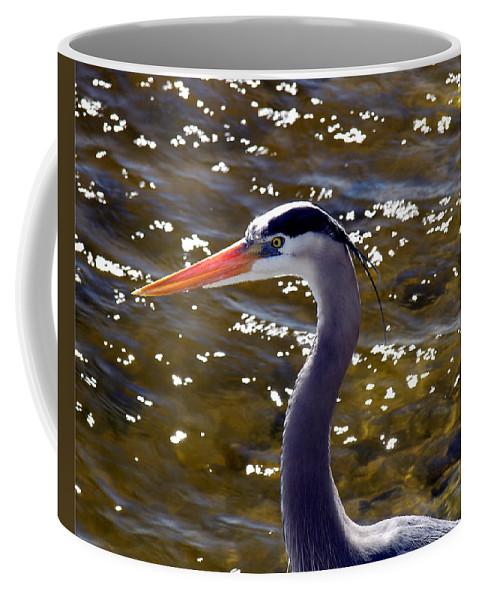 Ardea; Herodias; Great; Blue; Heron; Bird; Water; Fowl; Waterfowl; Merritt; Island; Wildlife; Refuge Coffee Mug featuring the photograph Great Blue Heron by Allan Hughes