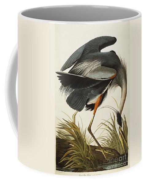 Great Blue Heron (ardea Herodias) Plate Ccxi From 'the Birds Of America' (aquatint & Engraving With Hand-colouring) By John James Audubon (1785-1851) Coffee Mug featuring the drawing Great Blue Heron by John James Audubon