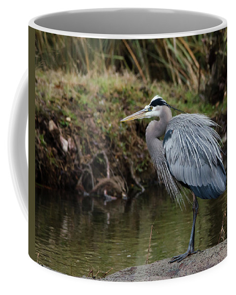 Hero Coffee Mug featuring the photograph Great Blue Heron On The Watch by George Randy Bass