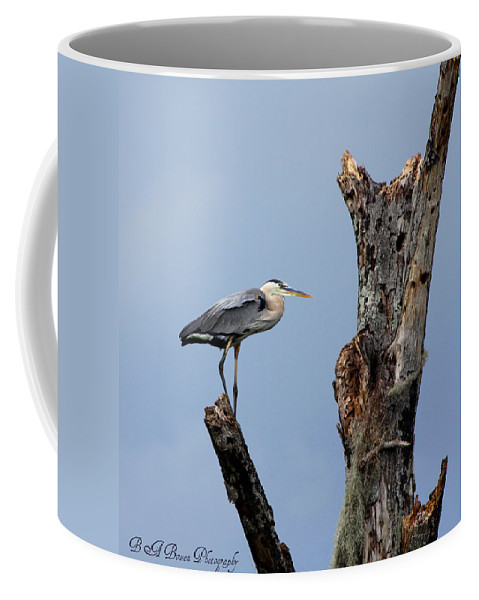 Great Blue Heron Coffee Mug featuring the photograph Great Blue Heron Perched by Barbara Bowen