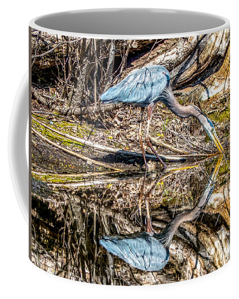 Gbh Coffee Mug featuring the photograph Great Blue Heron by Richard Chasin