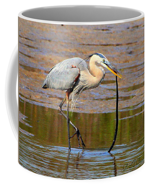 Great Blue Heron Coffee Mug featuring the photograph Great Blue Heron Wrestles A Snake by Barbara Bowen