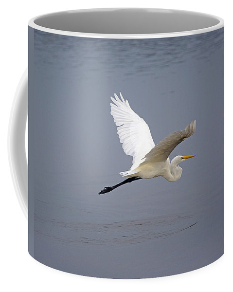 Egret Coffee Mug featuring the photograph Great Egret In Flight by Kenneth Albin