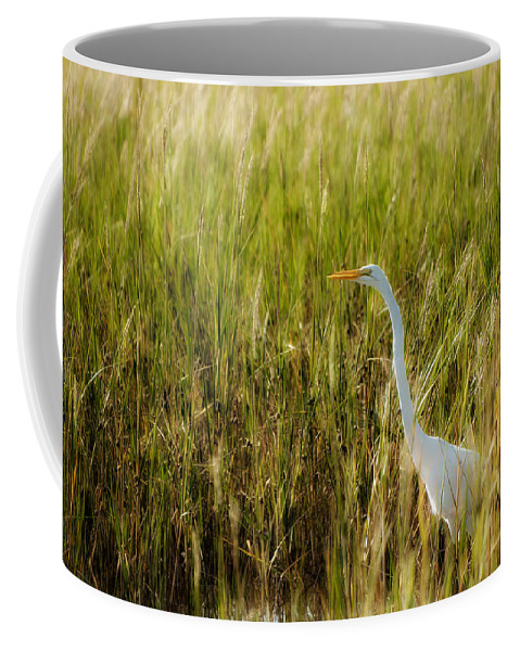 Ardea Alba Coffee Mug featuring the photograph Great Egret In The Morning Dew by Rich Leighton