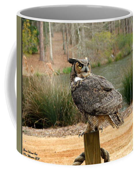 Wildlife Coffee Mug featuring the photograph Great Horned Owl 1 by Robert Meanor