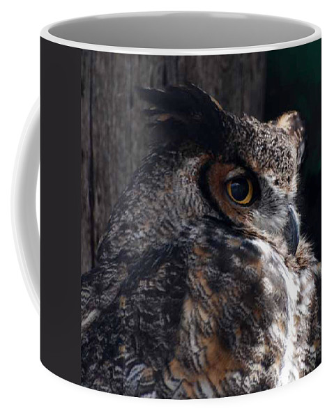 Great Horned Owl Coffee Mug featuring the photograph Great Horned Owl by Paul Ward