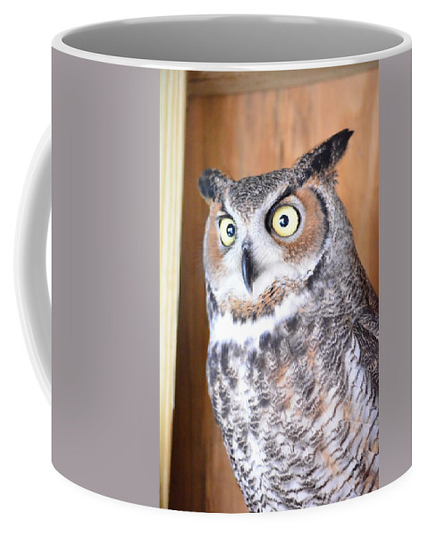 Great Coffee Mug featuring the photograph Great Horned Owl by Philip Ralley