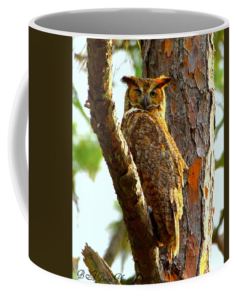 Great Horned Owl Coffee Mug featuring the photograph Great Horned Owl Wink by Barbara Bowen