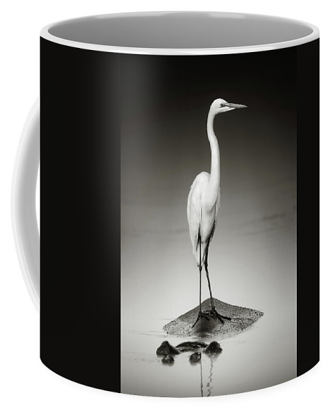 Egret Coffee Mug featuring the photograph Great White Egret On Hippo by Johan Swanepoel