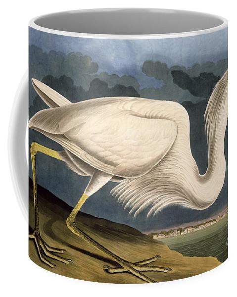 Great White Heron Coffee Mug featuring the drawing Great White Heron by John James Audubon