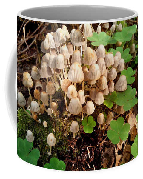 Mushrooms Coffee Mug featuring the photograph Grebes by Yuri Hope