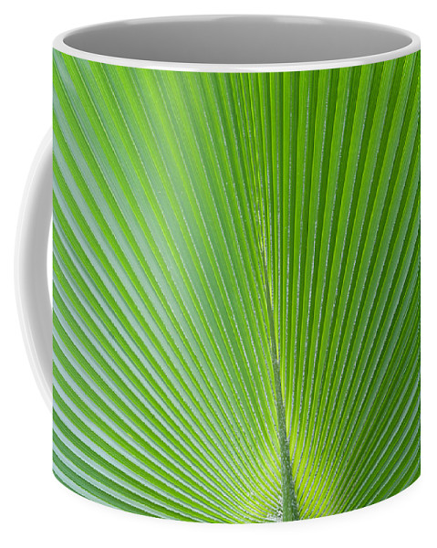 Leaf Coffee Mug featuring the photograph Green Abstract No. 2 by Helen Northcott