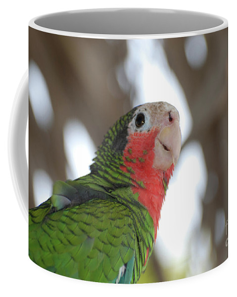 Conure Coffee Mug featuring the photograph Green And Red Conure With Ruffled Feathers by DejaVu Designs